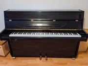 Klavier Hyundai U810