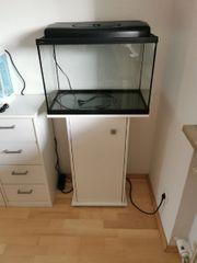 80 Liter Aquarium mit Filter