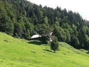 Ferienhaus Maisäss in Vorarlberg gesucht