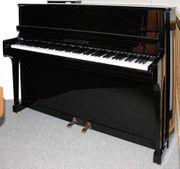 Klavier Grotrian-Steinweg 113 schwarz poliert
