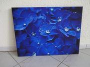 Leinwandbild Keilrahmen Kunstdruck Blaue Blumen