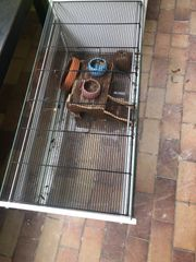 Käfig für Mäuse