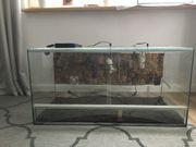 Glasterrarium 100x50x50 cm inkl UV-Lampe
