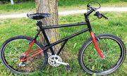 Schönes leichtes 21-Gang Stahl Mountainbike