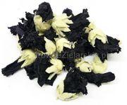 Stockrosen Schwarz Stockmalve zu verkaufen
