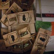 8er Pack gebrauchter Mäuse fallen