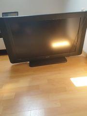 plazma Fernseher