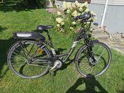 Trenoli-City E-Bike Tiefeinsteiger