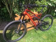 Specialized Enduro Expert Evo FSR