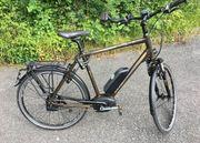 E-Bike Raleigh Stoker BS