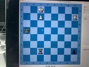 Sei ein Schach-Fuchs