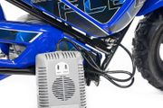 250W 24V Eco Flee Elektrobike