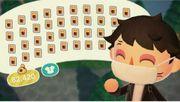 Animal Crossing New Horizons 40