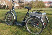 Elektrodreirad E-Bike Dreirad Glocknerbike E-Trike