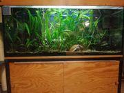 Aquarium ab zu geben