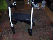 Rollstuhl-Kombination