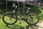 Mountainbike 26zoll Cycle Wolf