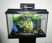 Juwel Primo Aquarium 70 LED