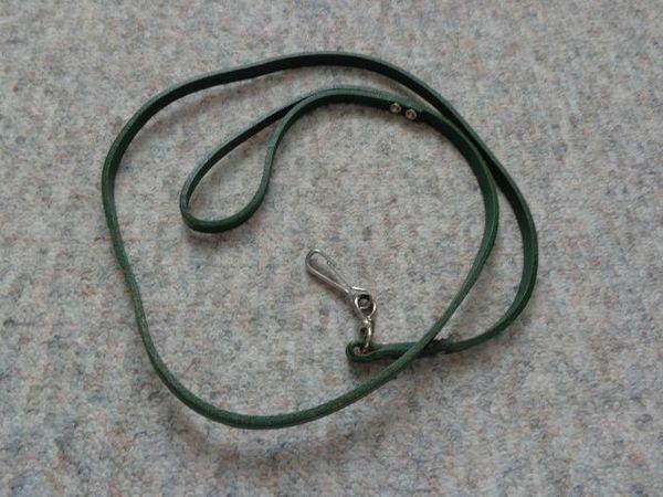Hundeleine Leder grün ca 101