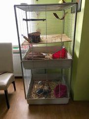 Verkaufe einen guten Ratten Käfig