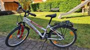 Pegasus Avanti Fahrrad Junior 24