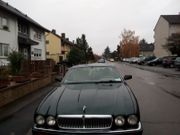 Jaguar xy exclusiv