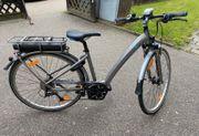 Damen E-Bike Felt Verza-E30 RH44