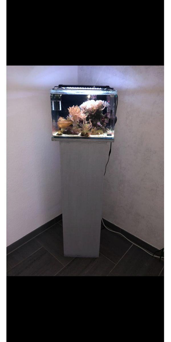 Meerwasseraquarium inkl Zubehör