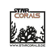 Korallen zu verkaufen Salzwasser LPS