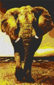 Vorlage für Ministeck Elefant 60x80cm