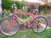 Mountain-Bike Jugendrad