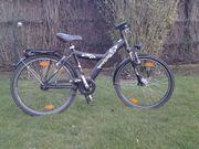 Pegasus Avanti Fahrrad ATB 26