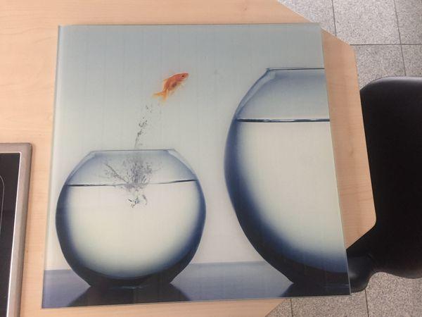 Glasbild 50 x 50 cm