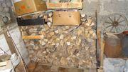 Brennholz Holz Buche Eiche gesp