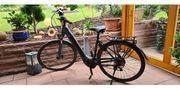 E-Bike Pegasus Premio Evo 10
