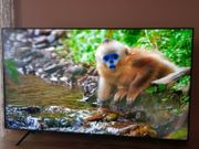 Samsung GQ65Q60T QLED Smart TV