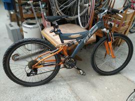 Singlespeed Bikes Shop | bei intertecinc.com gnstig