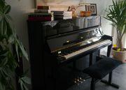 Klavier Schimmel K-122 E Konzert