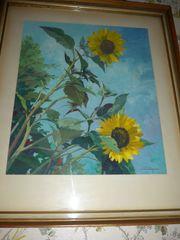 Wandwild Sonnenblumen Kunstdruck signiert