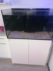 redsea reefer 250 liter