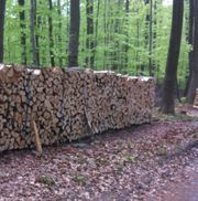 Brennholz Kaminholz ofenfertig trocken ab