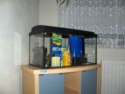 Aquarium 60cmx30cmx30cm Unterschrank Tetra Zubehör