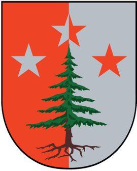 Karenzvertretung für Verwaltungsaufgaben bei der Gemeinde Damüls