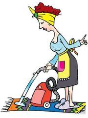 Reinigungskraft für Privathaushalt gesucht
