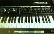 suche dig analog Synthesizer Tastenteile