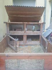 Hasen stall mit zwei Zwerg