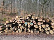 Brennholz EICHE - frisch -