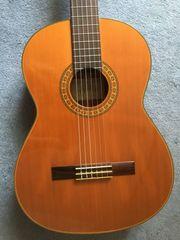 Shiro AC-15 Gitarre mit viel