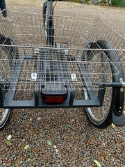Aktivelo Elektro Dreirad