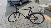 Cycle Wolf Blackfoot schwarzes 26